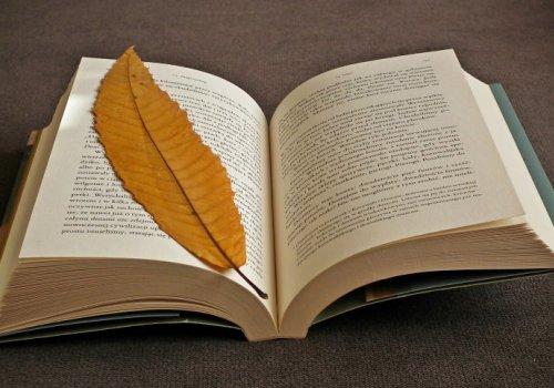 Nowa wystawa w pałacu w Starym Kisielinie – zakładki do książek z całego świata!